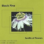 The Black Pine Sexlife Of Flowers