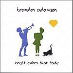 Brandon Adamson Bright Colors That Fade