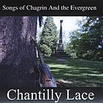Chantilly Lace Songs Of Chagrin And The Evergreen