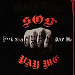 Styles Of Beyond Pay Me/Bleach (Single)