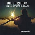 David Blonski Didjeridoo In The American Outback