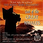 The Royal Irish Regiment Last Of The Great Whales