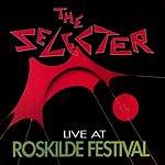 The Selecter Roskilde Rocks - Live At Roskilde Festival