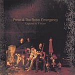 Panic & The Rebel Emergency Captured By A Vision