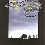 Burrito Brothers Back To The Sweethearts Of The Rodeo - Vol.1