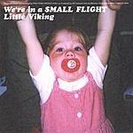 Little Viking We're In A Small Flight