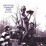 The Rooks A Wishing Well-Revisited