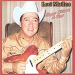 Levi Mullen Singer Without A Song