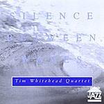 Tim Whitehead Silence Between Waves