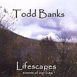 Todd Banks Lifescapes