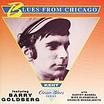 Barry Goldberg Blues From Chicago