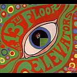 The 13th Floor Elevators The Psychedelic Sounds Of The 13th Floor Elevators (Bonus Tracks)