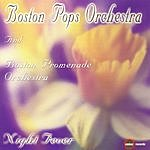 Boston Pops Orchestra Night Fever