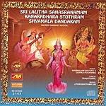 Mambalam Sisters Sri Lalitha Sahasranamam, Kanakadhara Stothram, Shyamala Dandakam
