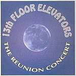The 13th Floor Elevators The Reunion Concert