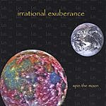 Irrational Exuberance Spin The Moon
