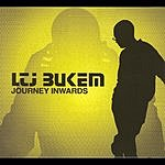 LTJ Bukem Journey Inwards