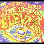 The 13th Floor Elevators The Psychedelic World Of The 13th Floor Elevators