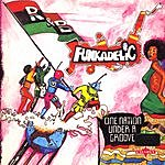 Funkadelic One Nation Under A Groove