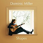 Dominic Miller Shapes