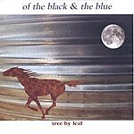 Tree By Leaf Of The Black & The Blue