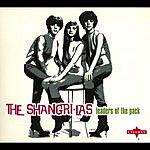 The Shangri-Las Leaders Of The Pack