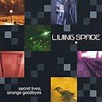 Living Space Secret Lives, Strange Goodbyes