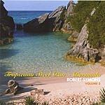 Robert Symons Tropicana Steel Pan: Bermuda, Vol.3