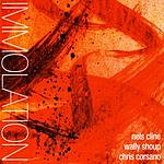 Nels Cline Immolation/Immersion