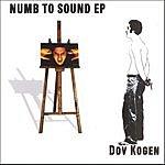 Dov Kogen Numb To Sound