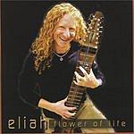 Eliah Flower Of Life