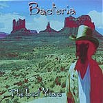 Bacteria The Lost Years
