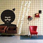 Pete Rock The Surviving Elements: From Soul Survivor II Sessions