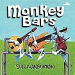 SullivanBurton Monkey Bars