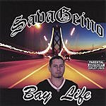 SavaGeino Bay Life (Parental Advisory)