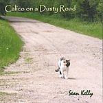 Sean Kelly Calico On A Dusty Road