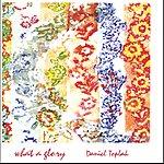 Daniel Toplak What A Glory