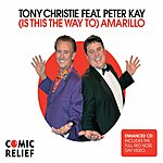 Tony Christie (Is This the Way To) Amarillo (Single)