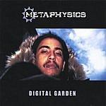 Metaphysics Digital Garden