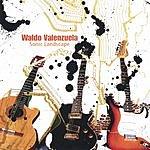 Waldo Valenzuela Sonic Landscape