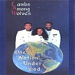 Lambs Among Wolves One Nation Under God
