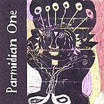 Parmidian One Can I Read You