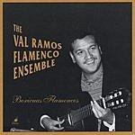 Val Ramos Flamenco Ensemble Boricuas Flamencos