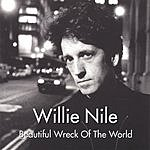 Willie Nile Beautiful Wreck Of The World