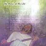 Ziggie The Music Of My Life