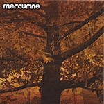 Mercurine Waiting For Another Fall