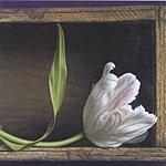 Pondering Judd Lonesome Heart Strangers
