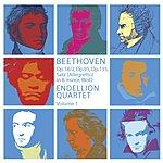 Endellion String Quartet String Quartets, Vol.1: Op.95, Op.18:2, Op.135, Movement in B Minor