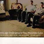 Chicago Underground Trio Possible Cube