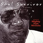 Mighty Sam McClain Soul Survivor